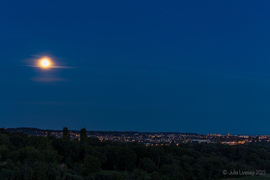 Blue Moon over Poole and Upton Heath (3)