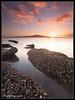 Sunrise Rangitoto