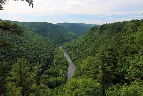 visitpaparks grand canyon pine creek gorge leonard harrison state parks pennsylvania