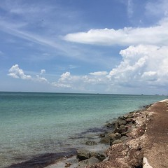 An afternoon on Key Biscayne #picoftheday #igersoftheday #igersflorida #beach #beautifuldestinations #iphoneonly #unfiltered ##Florida