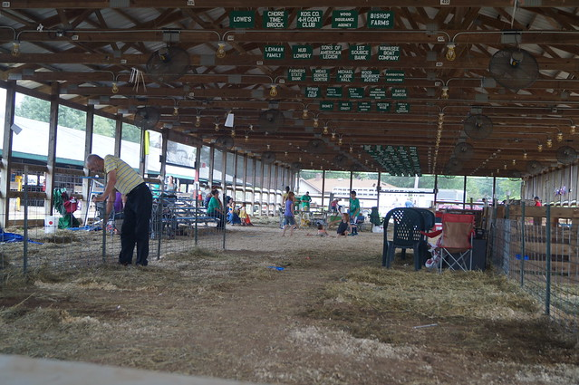 4H Fair Week: Day 6