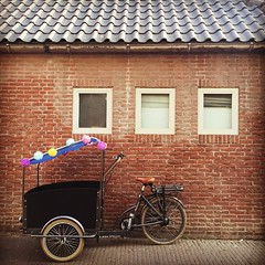 #bakfiets #bicycle #leiden #netherlands #urbanphotography