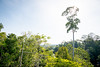 Borneo Expedition by AlexFrood