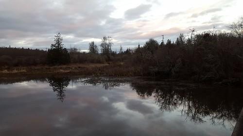 wetland kitsappeninsula unionriver thelerwetlands sunset cloudsstormssunsetssunrises galaxys6