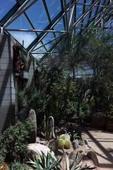 Botanical 00313