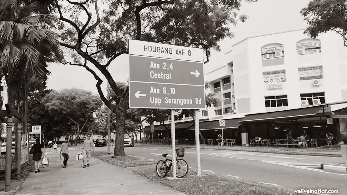 Bougainvillea at Hougang Neighbourhood Park 6