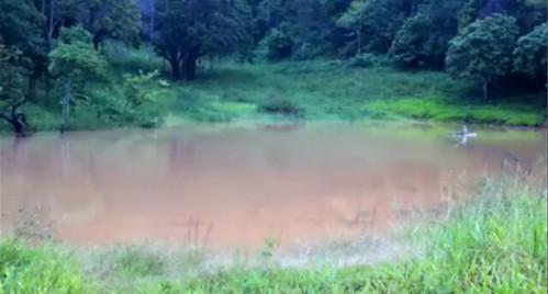 農場最高處的水壩。攝影:林貞妤。