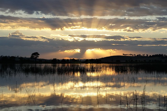When magic happens at dawn with Dawn at Dangars Lagoon in Uralla