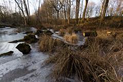 Canal d'Ille-et-Rance-046