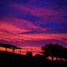 20150627_05_SIGMA dp2 Quattro Twilight by foxfoto_archives