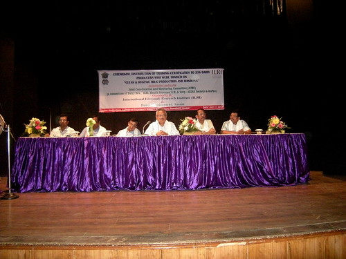 Institutional officials and representatives at the certificate distribution ceremony