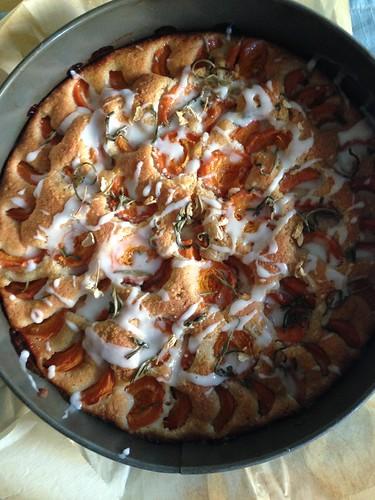 Apricot Jasmine Tea Cake