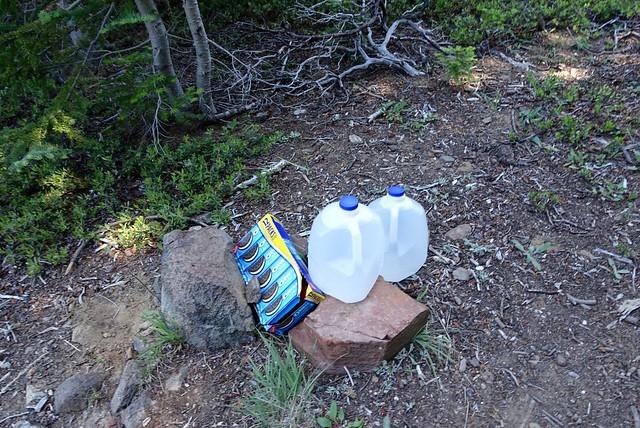 Trail magic, yummy Oreos