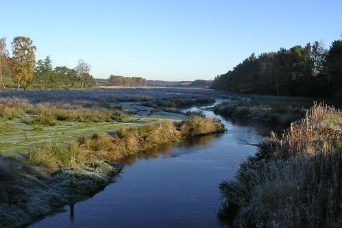 å stream nature fishing denmark jylland haderiså vandløb efterår morgen morning lys light