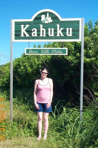 Drive with Aloha!