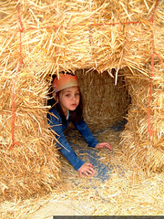 olivia hiding in a hay bale tunnel - dscf6656