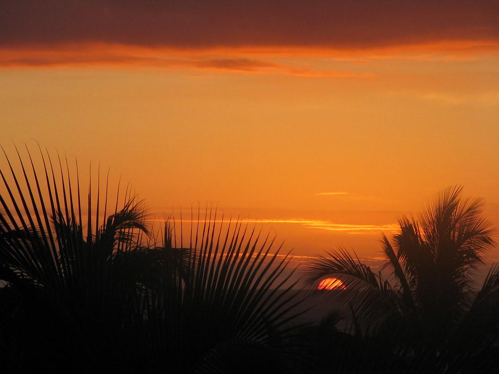 Hawaii Pics 007
