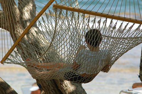 ocean d50 view puertorico hammock 111v1f doradobeach 3wayrelaxing