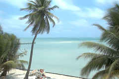 Belize - View from Balcony