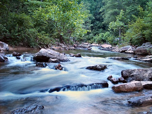 trees summer greenleaves mountains water leaves river virginia rocks stream forrest explorer rapids shenandoahvalley movingwater naturescene intrestingness calendarshots specnature theworldthroughmyeyes easternnorthamericanature markschurig