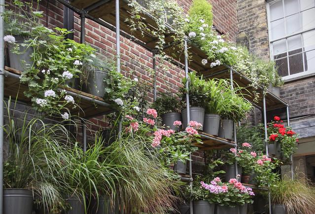 Spitalfields Gardens Group - garden7