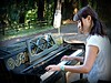 A Piano in the Woods