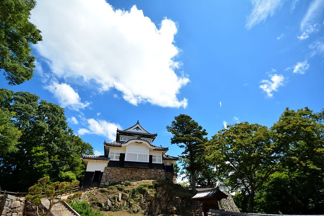Bitchu Matsuyama castle 7