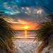 Sunset Dunes by Bobby Palosaari