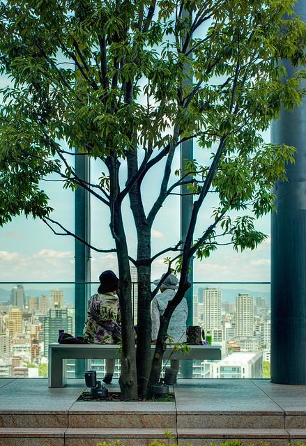 Abeno Harukas on 16th floor (あべのハルカスの16階庭園)