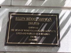 Photo of Black plaque number 40208