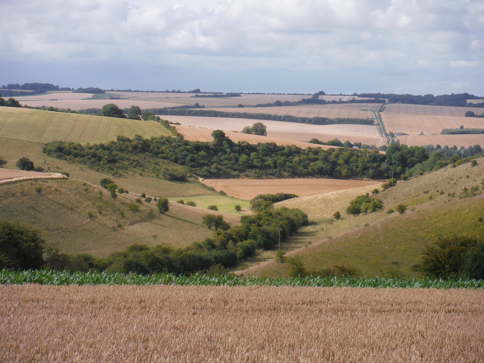 Bishopstone from the top of the Down SWC Walk 254 Salisbury Circular
