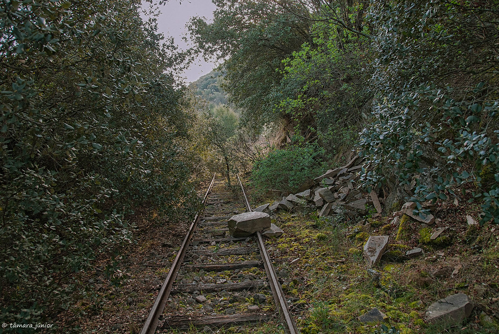 2012 - Linha Sabor (Pocinho-Moncorvo) 077