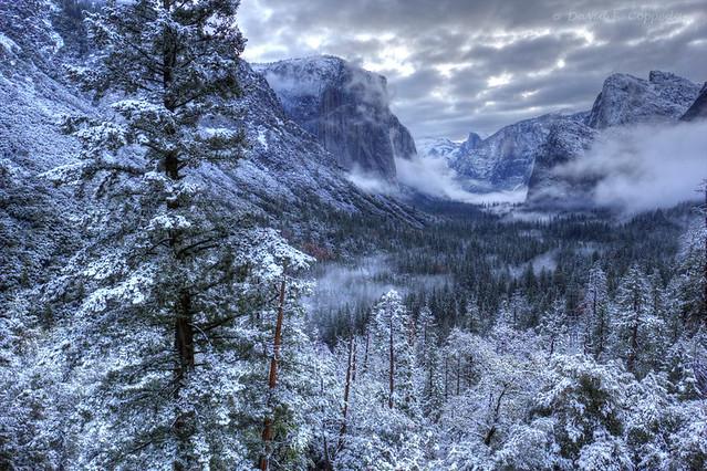 Merry Yosemite Christmas
