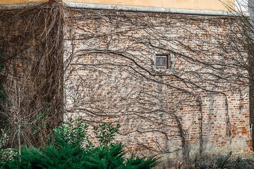 Schloss Weinburg
