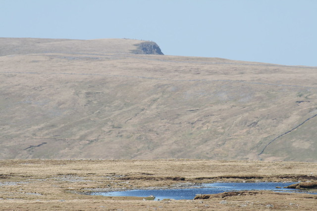 Wild Boar Fell from Baugh Fell (zoom to distant cairns)