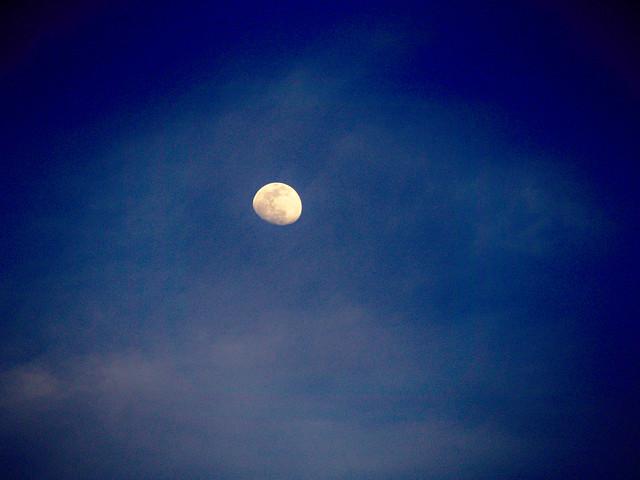 Random Moon Shot