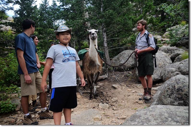 Jacob & Llama