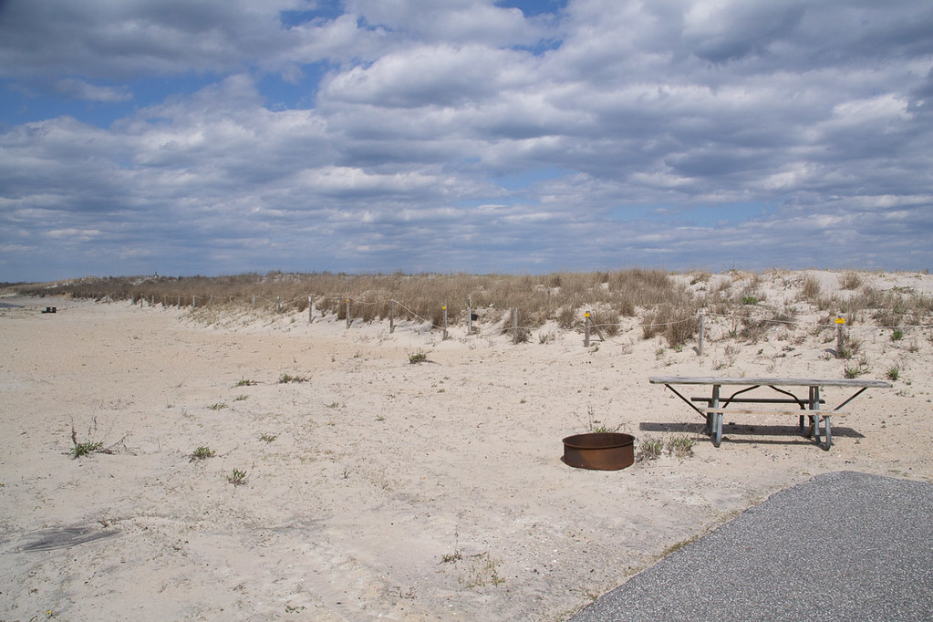 Campsite B35 at Assateague State Park