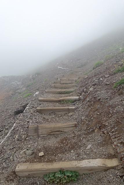 Trail up Mt Ellinor
