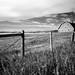 Prairie Barn Western Canada