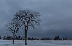 Park Point, Duluth Snow