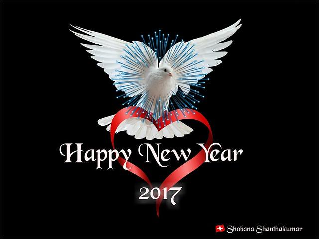 Happy New Year 2017.....😀