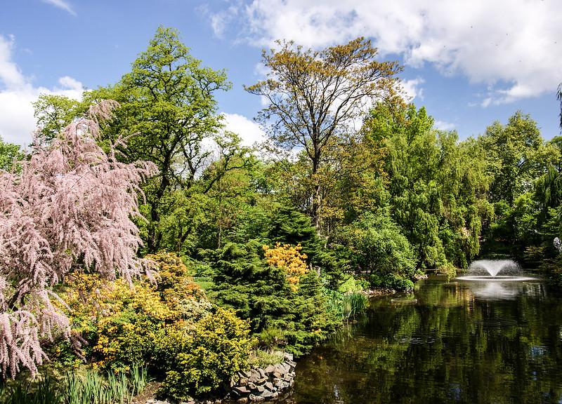 Botanical garden in Wroclaw