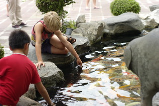 Image of Wat Pho Temple. fish temple pond child bangkok thai budha watpho