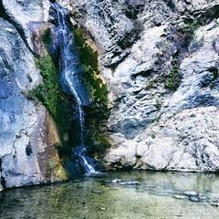 From last Saturday's early morning hike. :green_heart:  #latergram #LosAngeles #vscocam #vsco
