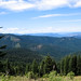 IMG_4369 by siskiyou out back