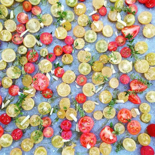 tomat plaadil