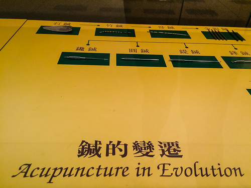 Acupuncture in Evolution