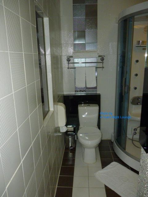 12儷達商務飯店 浴廁 1