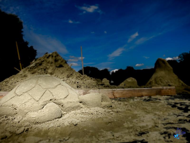 2015 - étang du Moulin, tortue surprise à pondre ses œufs dans le sable de la presqu'île d'Enghien